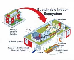 Suistainable Indoor Ecosystem infographic