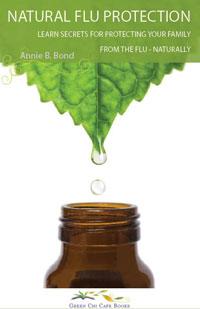 Flu: Natural Flu Protection by Annie B. Bond, Healthy Home & Green Living Books & Videos - HealthyHouseInstitute.com